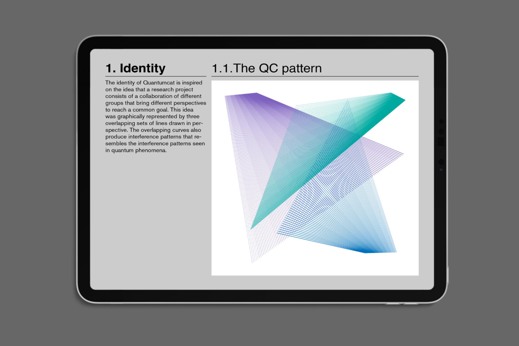 Quantumcat-identity-guide-2-Daniel-Cavalcanti